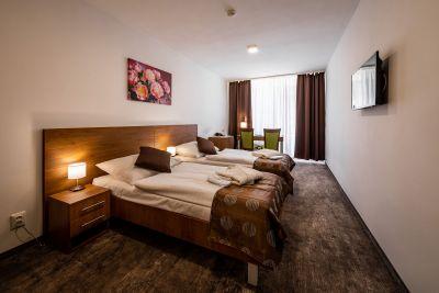 Hotel Ozón izba superior***+