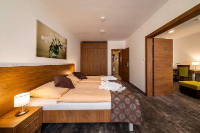 Hotel Ozón apartmán superior***+